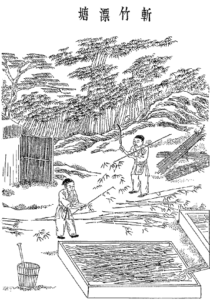 производство бумаги в китае