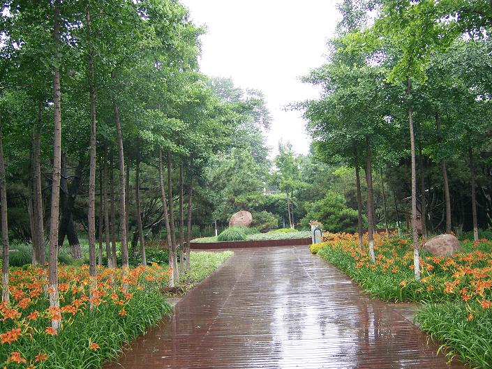 Бэйдайхэ ботанический сад