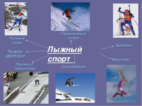 Лыжный вид спорта
